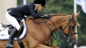 Why Cevo Itot du Chateau is Tops-Alexander's horse of a lifetime