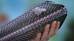 Paralympic torch heralds landmark