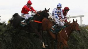 Aintree fences 'should be bigger'